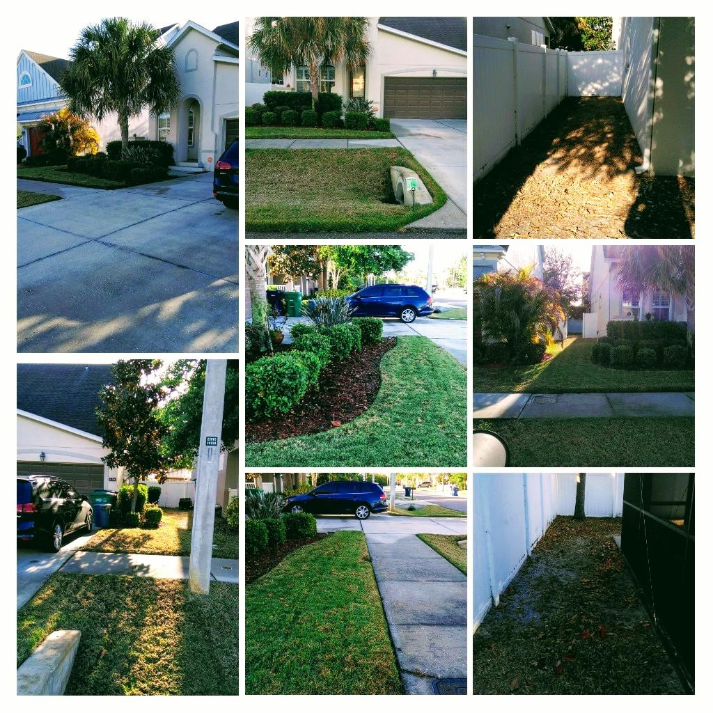 Lawn Care Service in St.Petersburg, FL, 33703
