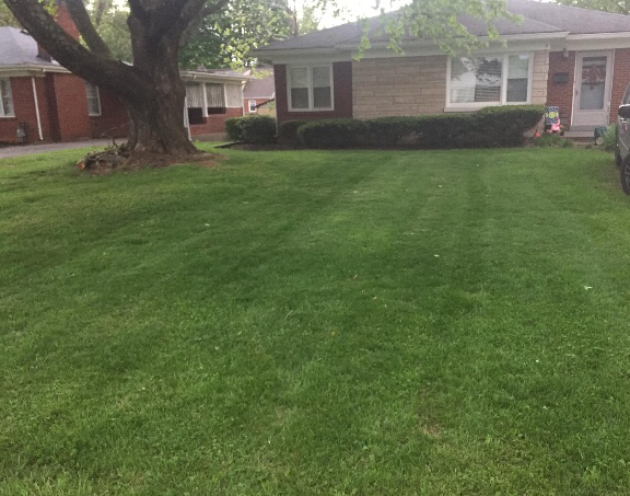 Lawn Care Service in Louisville , KY, 40291