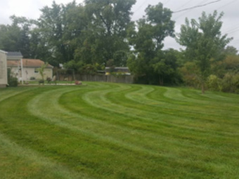 Lawn Care Service in Indianapolis, IN, 46227