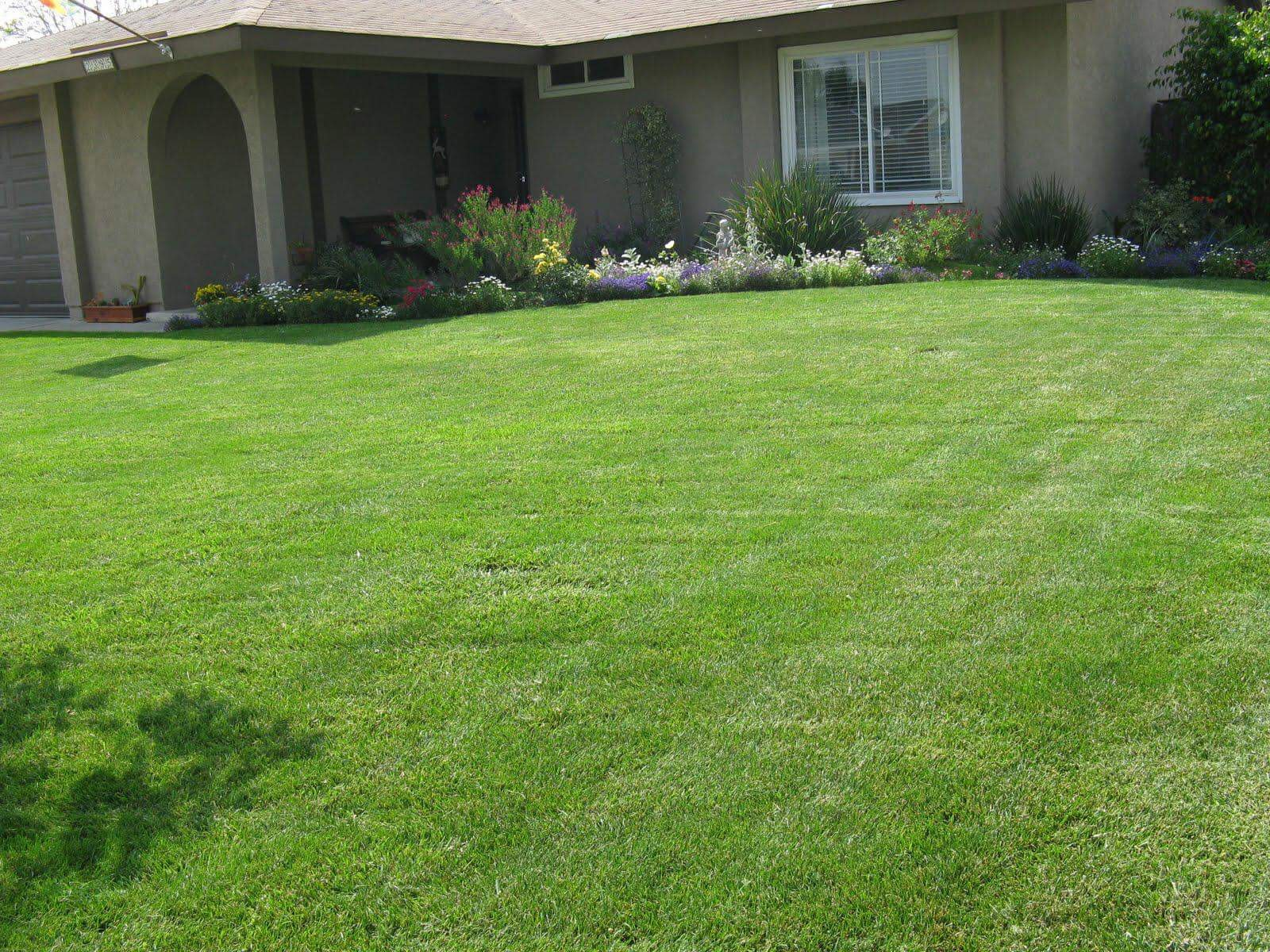 Lawn Care Service in Okc, OK, 73135
