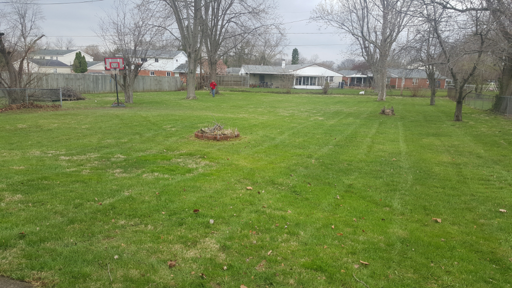 Lawn Care Service in Dayton, OH, 45403