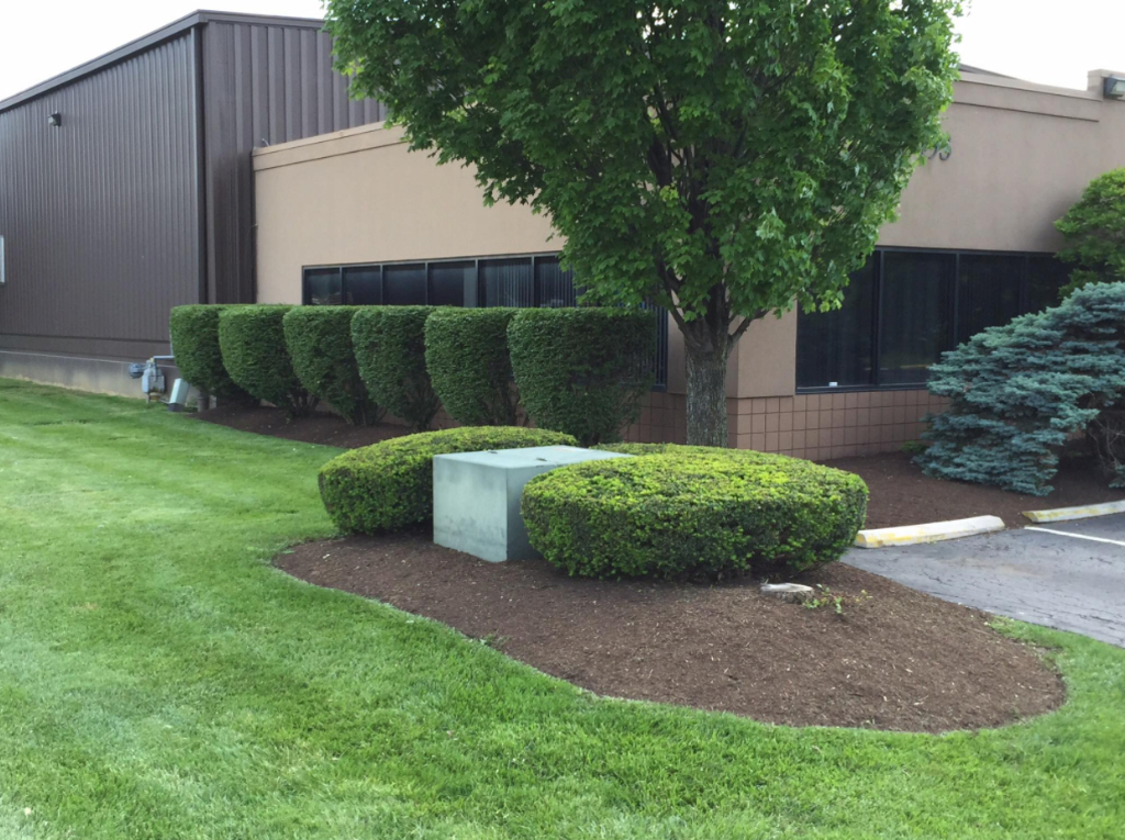 Lawn Care Service in West Chester Township, OH, 45069