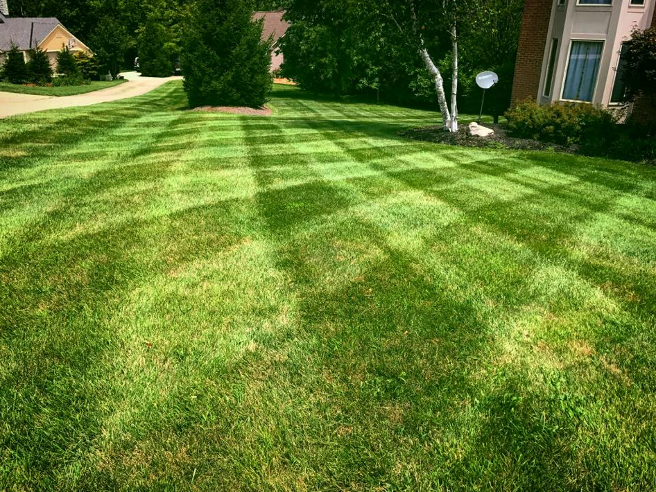 Lawn Care Service in Cincinnati, OH, 45211