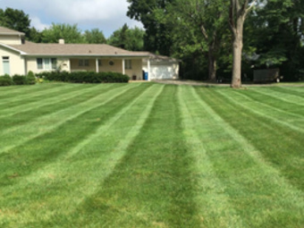 Lawn Care Service in Indianapolis , IN, 46240
