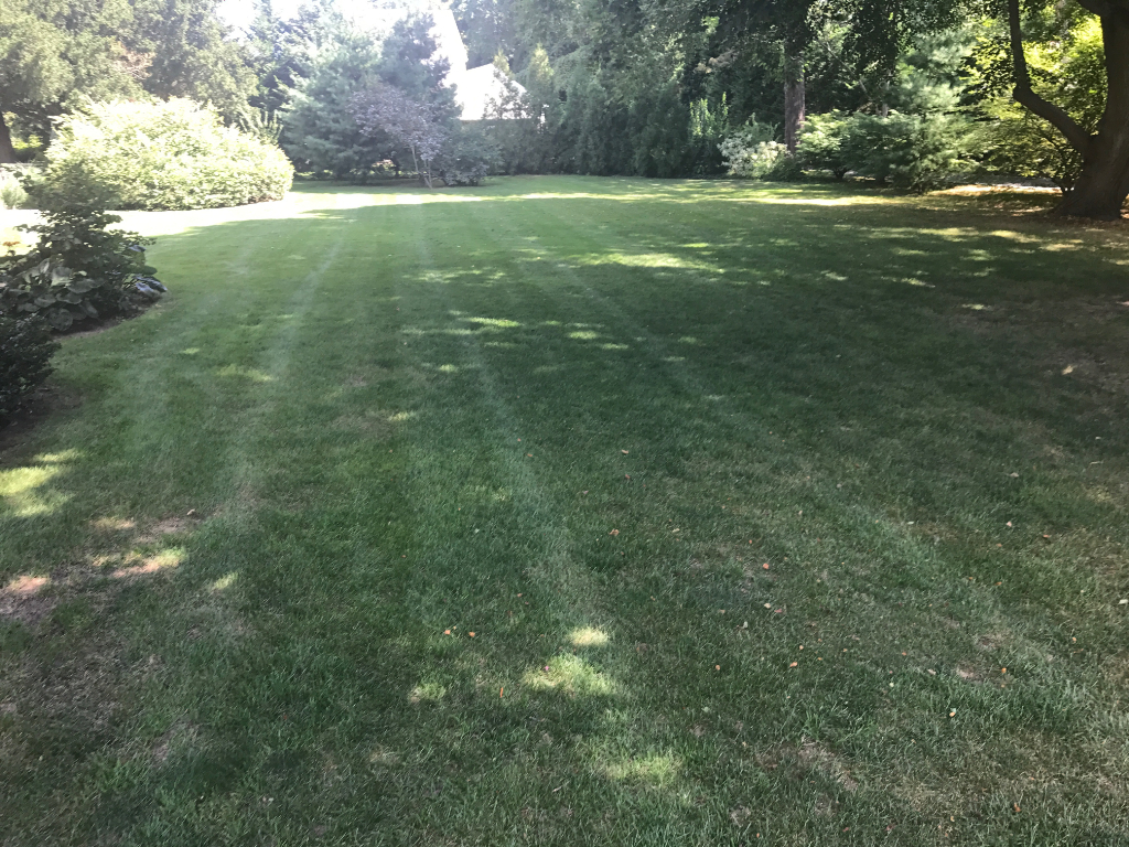 Lawn Care Service in Westbrook, CT, 06498