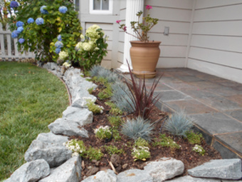 Lawn Care Service in Redwood City, CA, 94063
