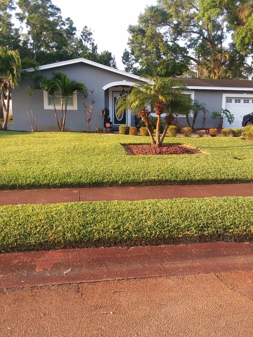 Lawn Care Service in St. Petersburg, FL, 33712