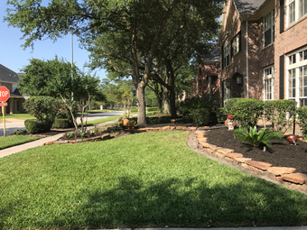 Lawn Care Service in Houston , TX, 77009