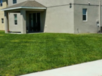 Lawn Care Service in Brooksville, FL, 34601