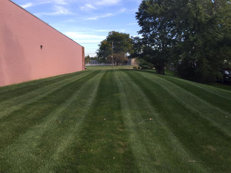 Lawn Care Service in Lakewood, OH, 44107