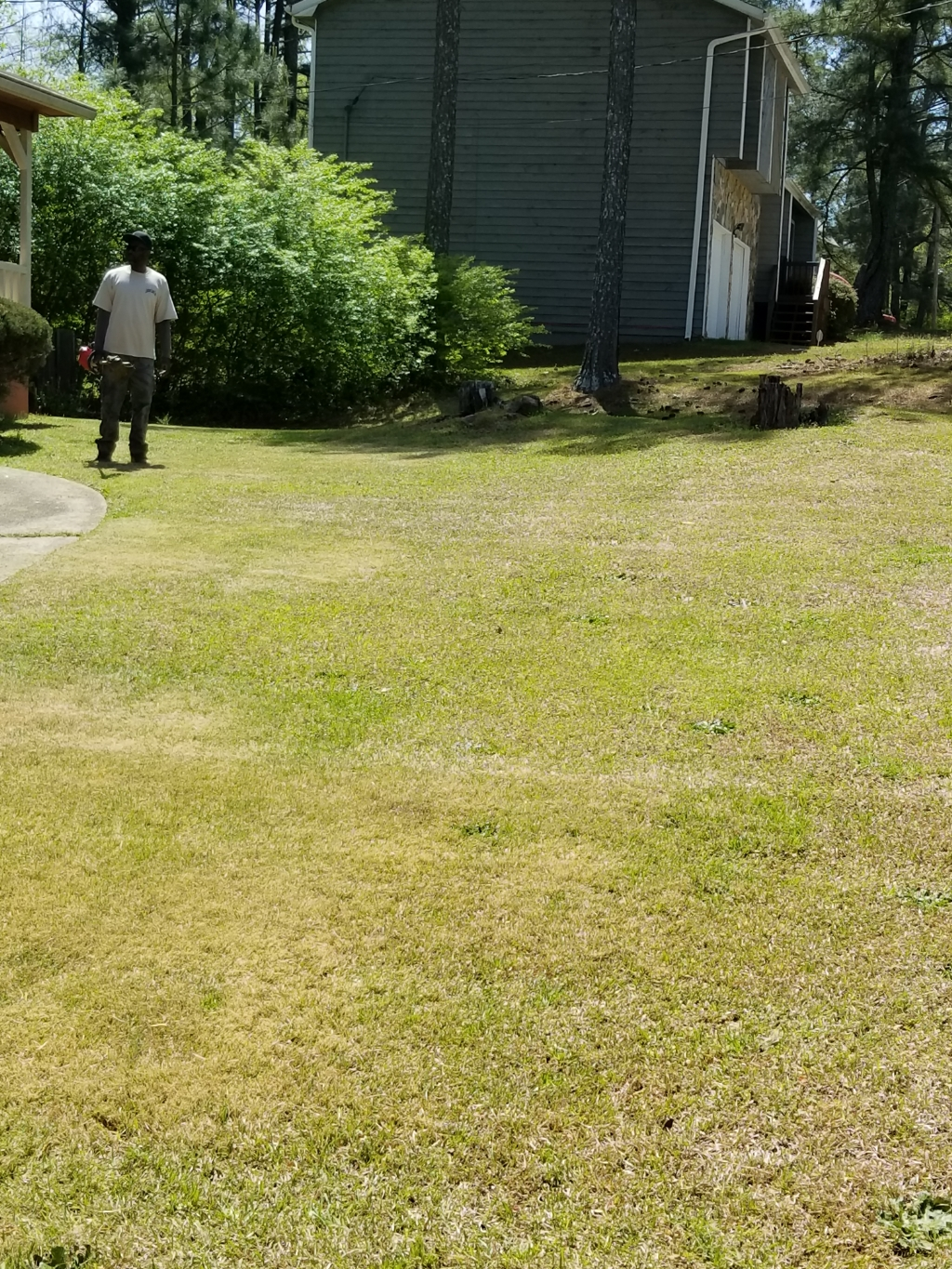 Lawn Care Service in Covington, GA, 30016