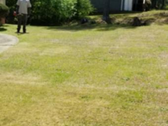 Lawn Care Service in Covington, GA, 30016