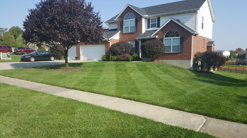 Lawn Care Service in Liberty Twp, OH, 45011