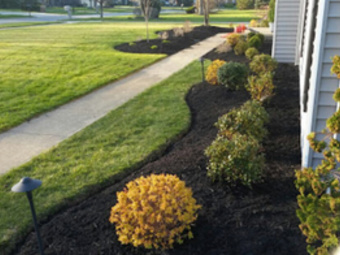 Lawn Care Service in Brook Park, OH, 44142