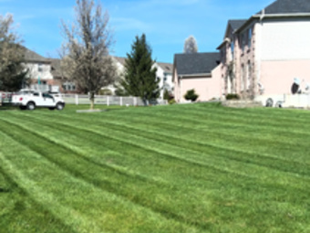 Lawn Care Service in Walton, KY, 41094