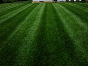 Lawn Care Service in Moscow, OH, 45153