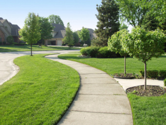 Lawn Care Service in Livingston, CA, 95334
