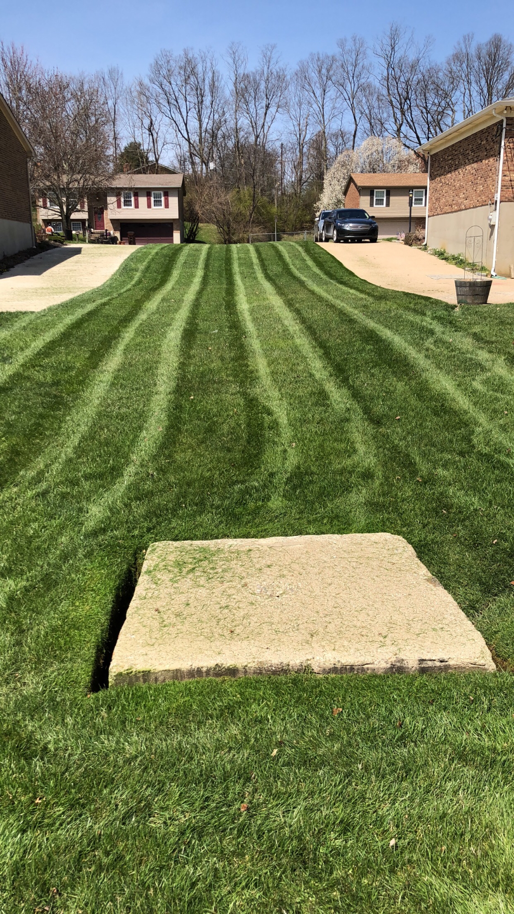 Lawn Care Service in Independence , KY, 41051