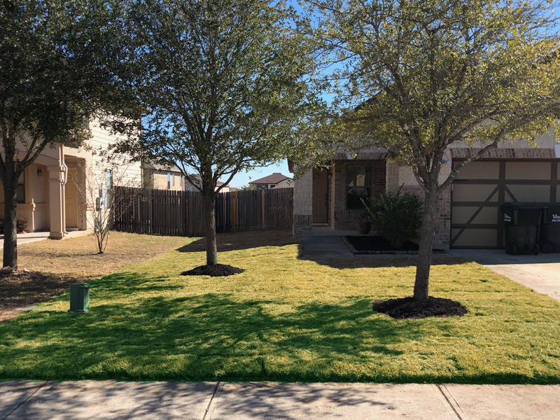 Lawn Care Service in San Antonio, TX, 78254