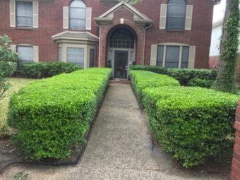 Lawn Care Service in Houston, TX, 77014