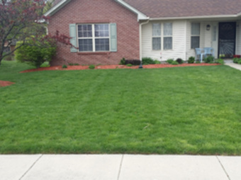Lawn Care Service in Indianapolis, IN, 46222