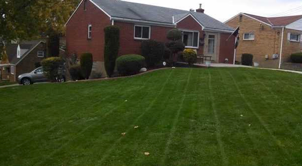 Lawn Care Service in Pittsburgh, PA, 15241