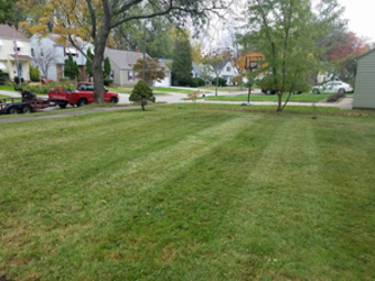 Lawn Care Service in Cleveland, OH, 44104