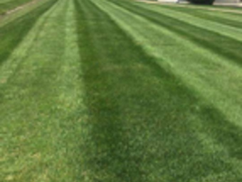 Lawn Care Service in Dupont, IN, 47231