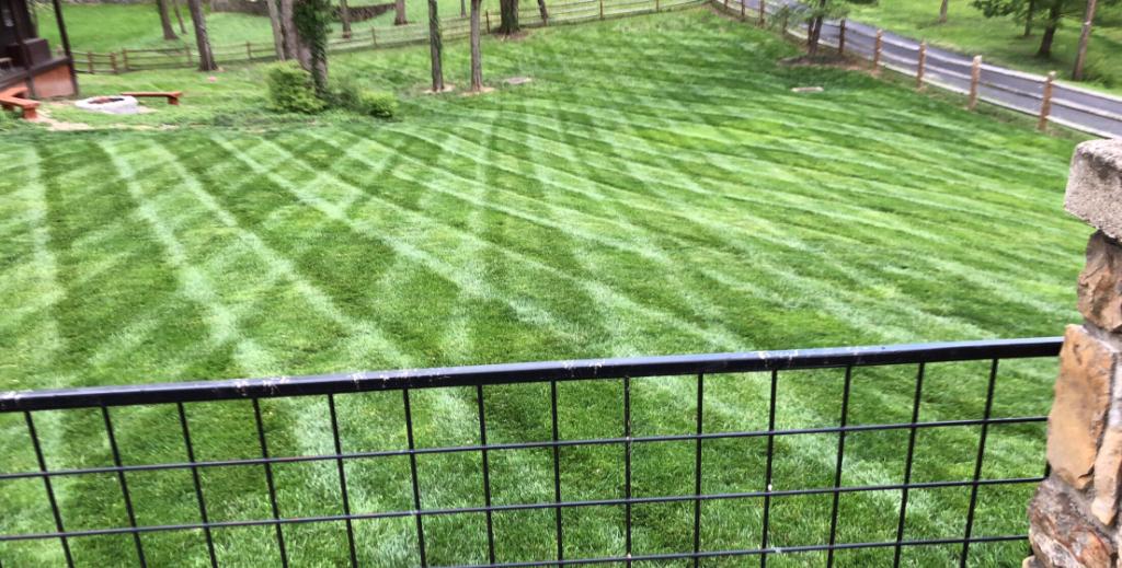 Lawn Care Service in Cincinnati , OH, 45216