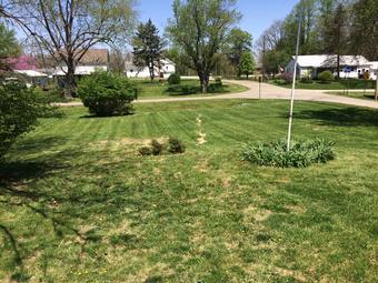 Lawn Care Service in Alexandria, IN, 46001