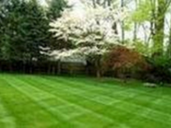Lawn Care Service in West Chicago, IL, 60185