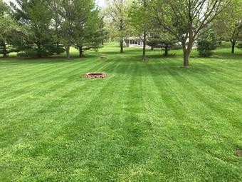 Lawn Care Service in Edwardsville , IL, 62025