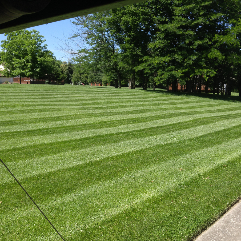 Lawn Care Service in Grain Valley , MO, 64029