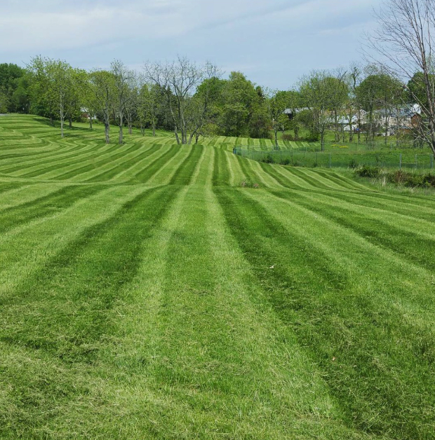 Lawn Care Service in Greensburg, PA, 15601