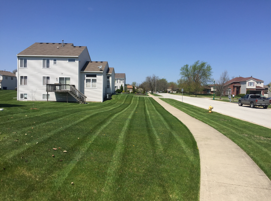 Lawn Care Service in Posen, IL, 60469