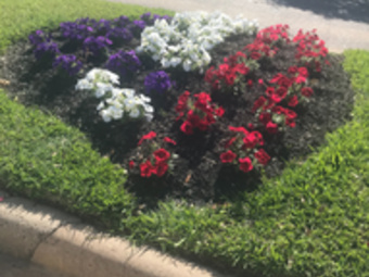 Lawn Care Service in Houston, TX, 77086
