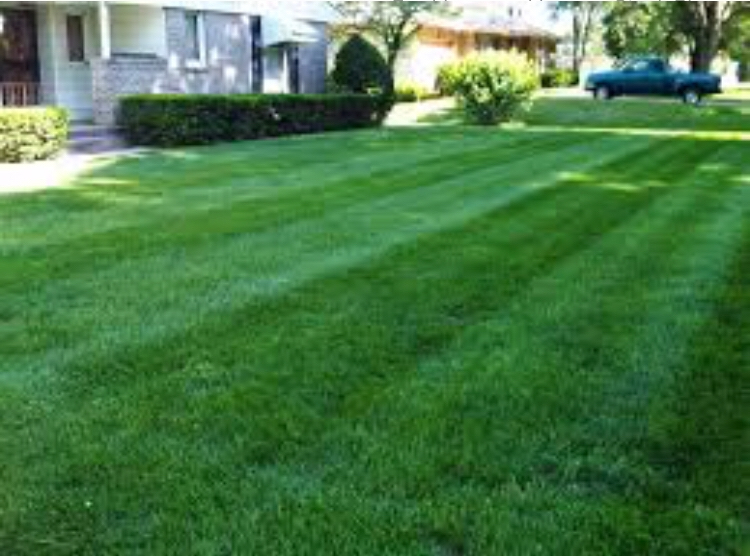 Lawn Care Service in Evansville , IN, 47714