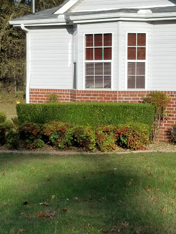 Lawn Care Service in Murfreesboro , TN, 37133