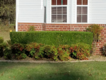 Lawn Care Service in Murfreesboro , TN, 37133