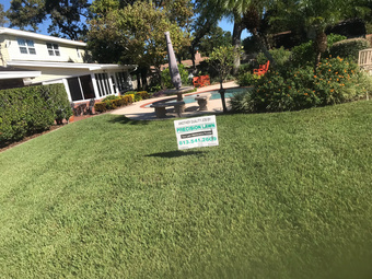 Lawn Care Service in Seffner , FL, 33584
