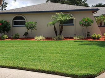 Lawn Care Service in Seminole, FL, 33777