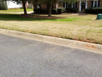 Lawn Care Service in Charlotte , NC, 28269