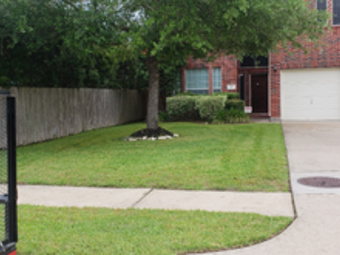 Lawn Care Service in Houston , TX, 77084