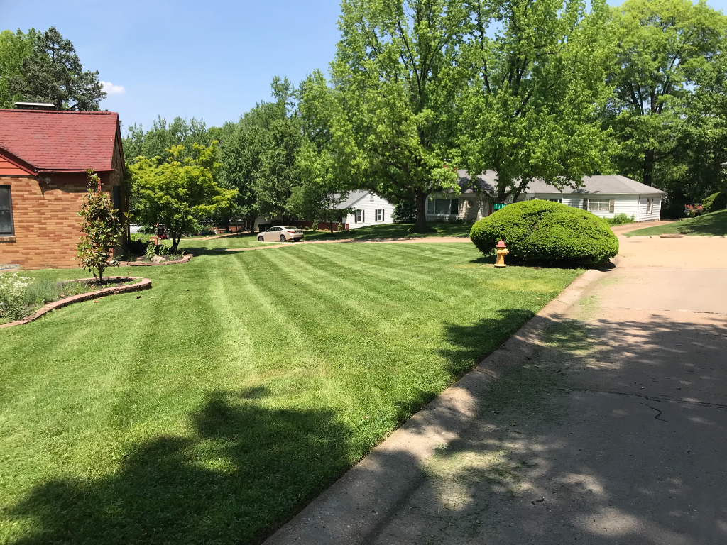 Lawn Care Service in Webster Groves, MO, 63119