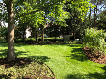 Lawn Care Service in Columbus, OH, 43235