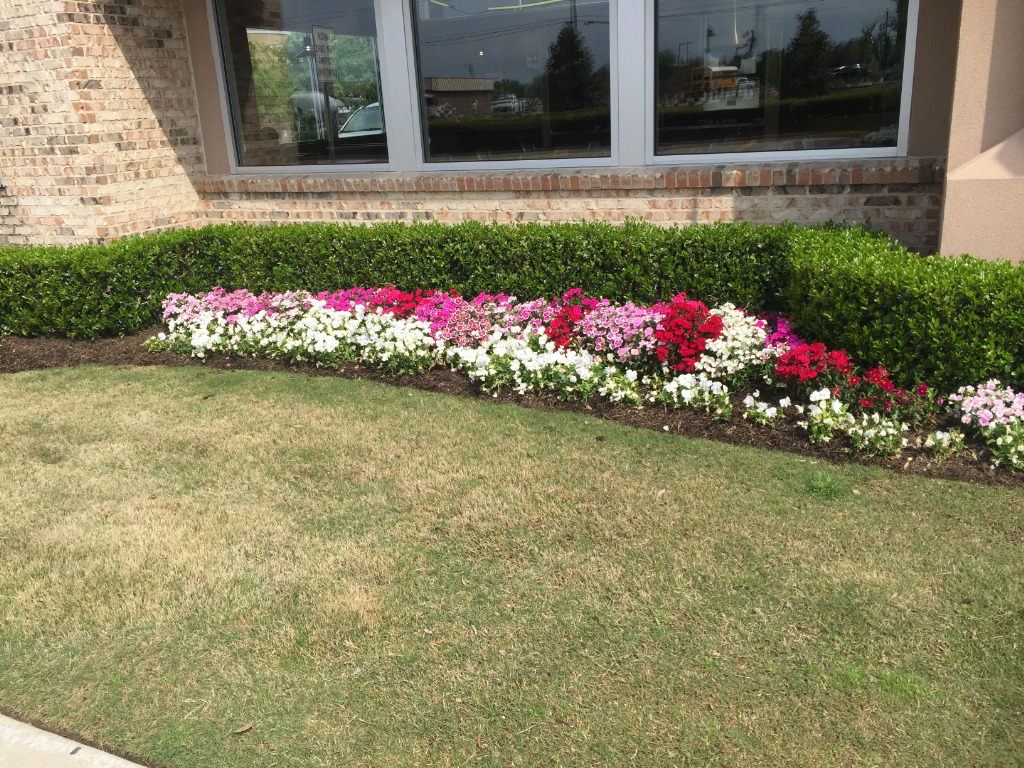 Lawn Care Service in Garland, TX, 75041