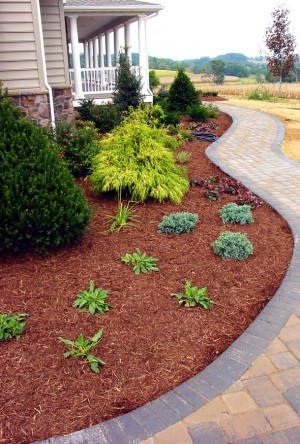 Lawn Care Service in Cleveland, OH, 44119