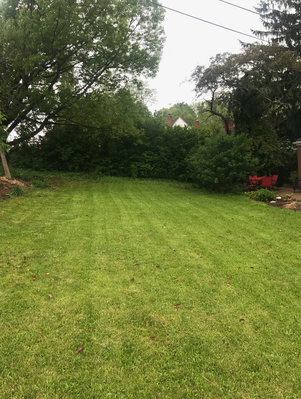 Lawn Care Service in Munhall, PA, 15120