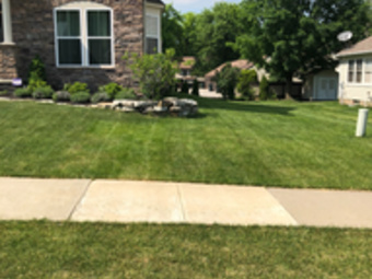 Lawn Care Service in Cleveland , OH, 44105