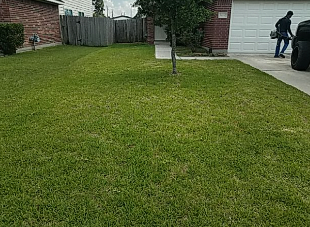 Lawn Care Service in Conroe, TX, 77304